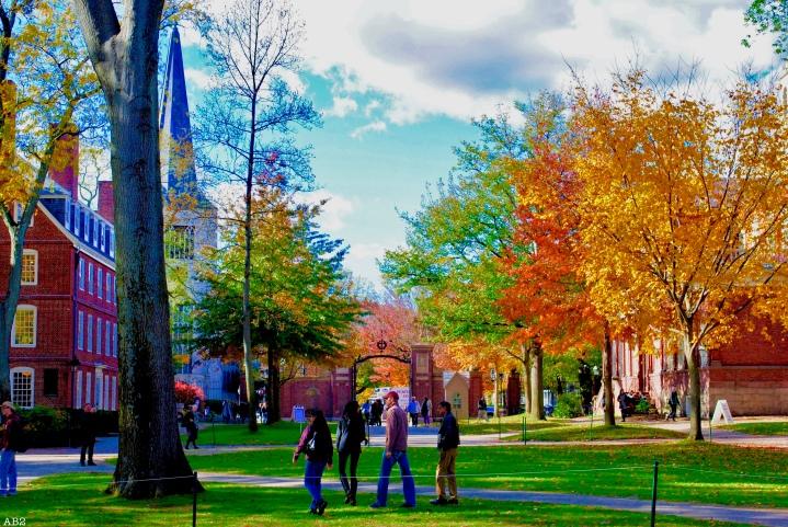À la découverte de Boston et son UniversitéHarvard