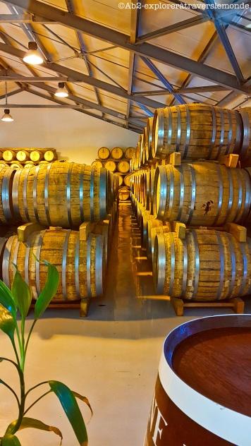 brasserie bologne