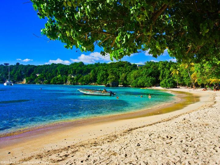 À la découverte de l'île papillon – L'archipel de laGuadeloupe
