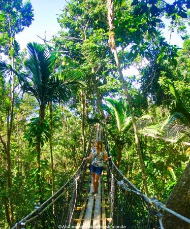 zoo de guadeloupe - pont 2