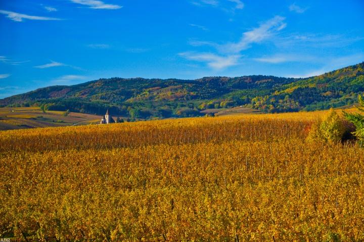 L'Alsace en passant par Genève en quatrejours