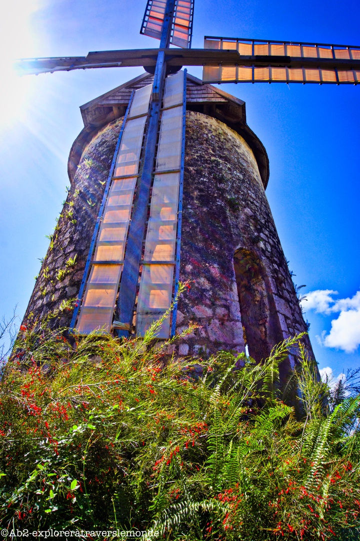 Une journée culturelle sur l'île de Marie-Galante surnommée «la Grande Galette»