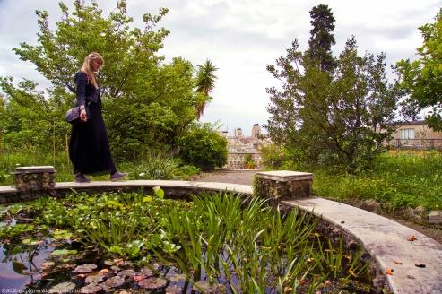 Jardin Botanique - étang vue