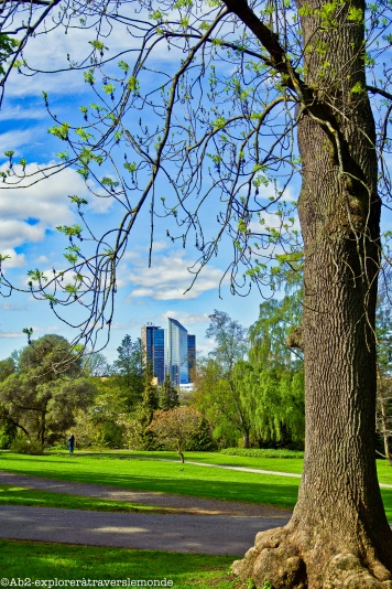 Jardin botanique - comme un air de Boston