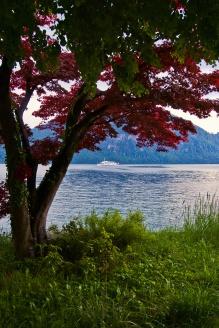Lac des quatre cantons