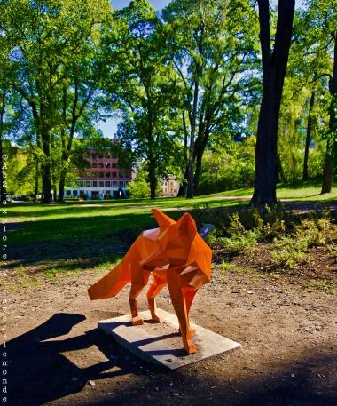 Parc royal - renard