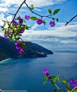 Vue sur le village de Manarola - fleurs